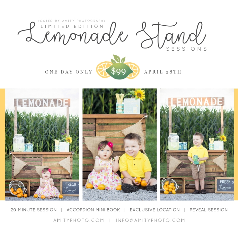 lemonadestand18ap